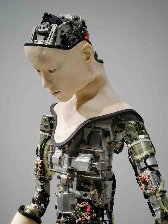 Do vacuum robots really work
